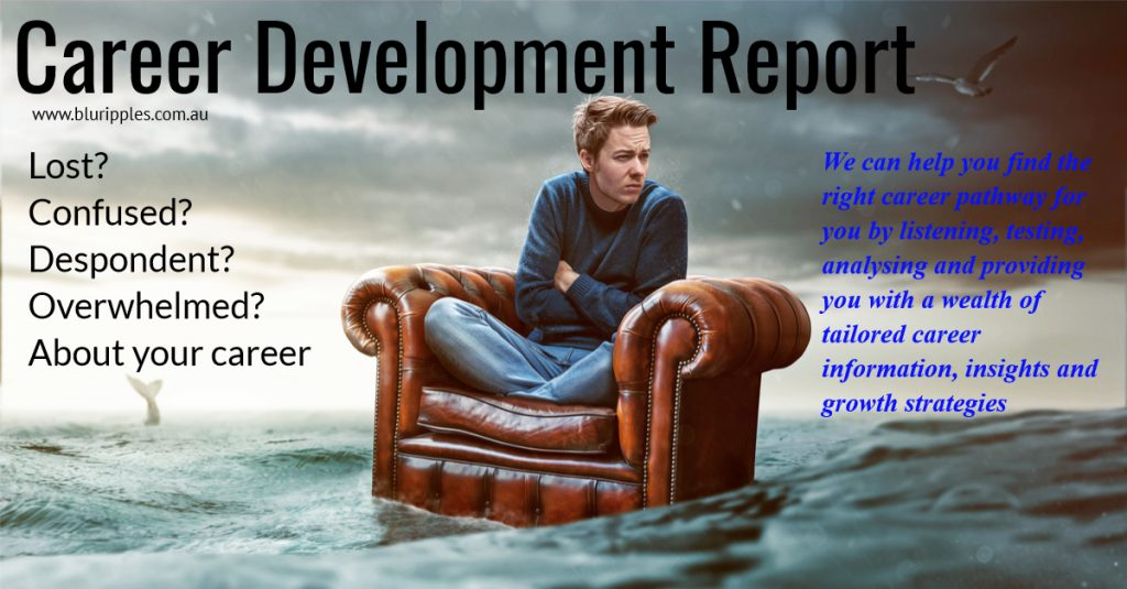 Career Development Report - Blu Ripples