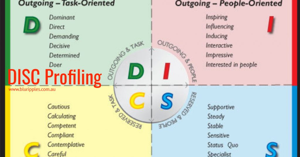 DISC Insights Personality Profiling Services